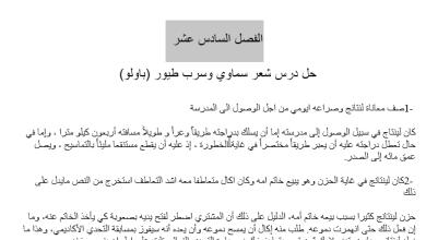 Photo of حل الفصل السادس عشر شعر سماوي وسرب طيور (باولو)  عساكر قوس قزح