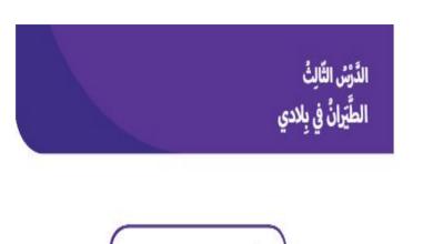 Photo of حل درس الطيران في بلادي دراسات اجتماعية صف ثاني فصل ثالث