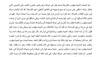 Photo of تلخيص درس اتصال هاتفي رواية أحلام ليبل السعيدة