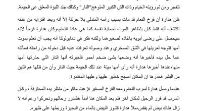 Photo of تلخيص الفصل الثاني والعشرين الهرب رواية الولد الذي عاش مع النعام صف سابع