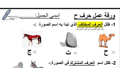 Photo of ورقة عمل حرف الحاء لغة عربية صف أول فصل أول