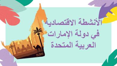 Photo of حل درس الأنشطة الاقتصادية في دولة الإمارات دراسات اجتماعية صف رابع فصل ثاني