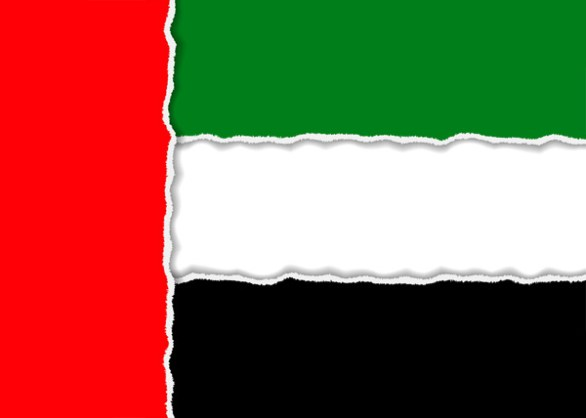 uae flag picture