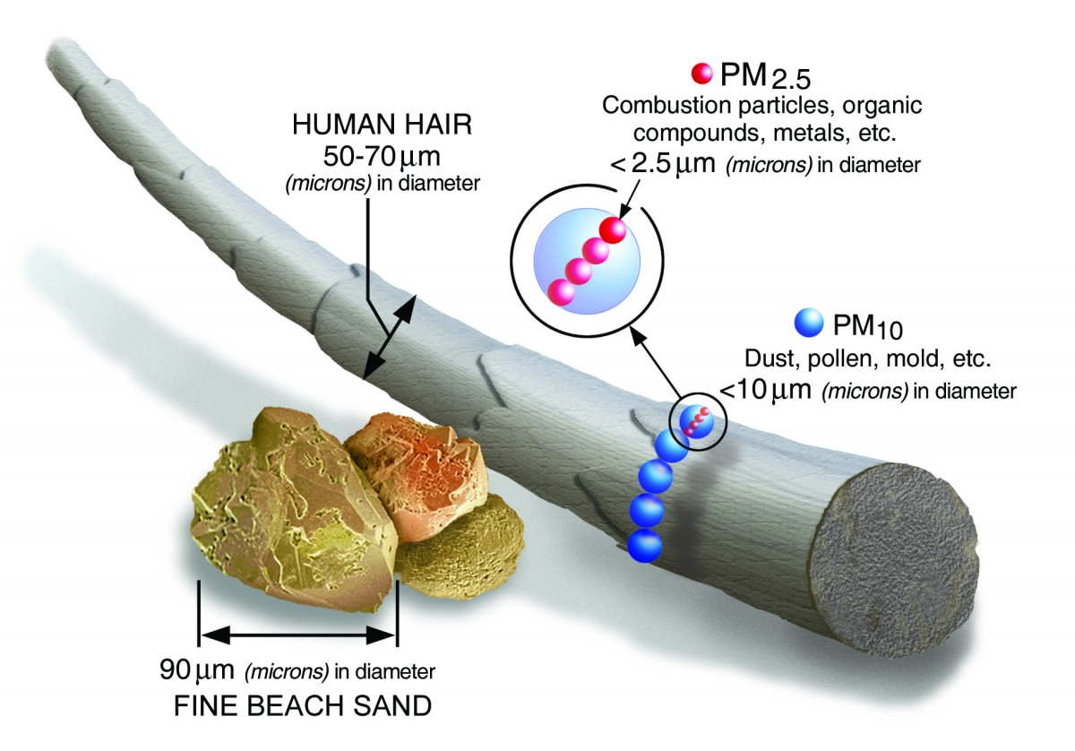 PM 2.5 scale compared to a human hair