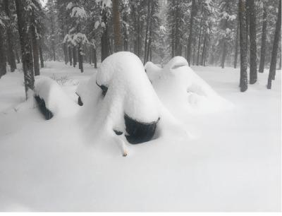 Early November snowfall near Whitehorse, Yukon Photo: C. Cibart , Yukon Emergency Services. 2 Nov 2020