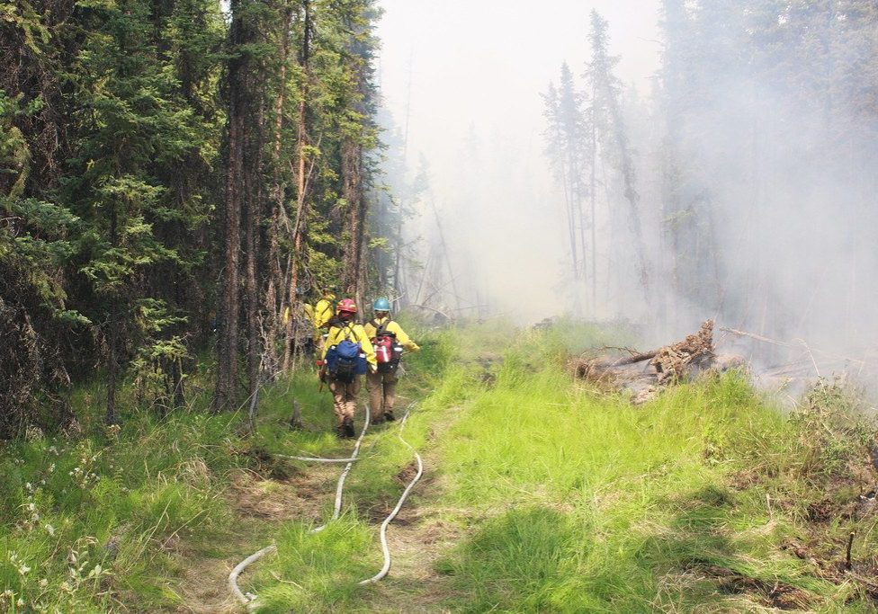 firefighters in forest