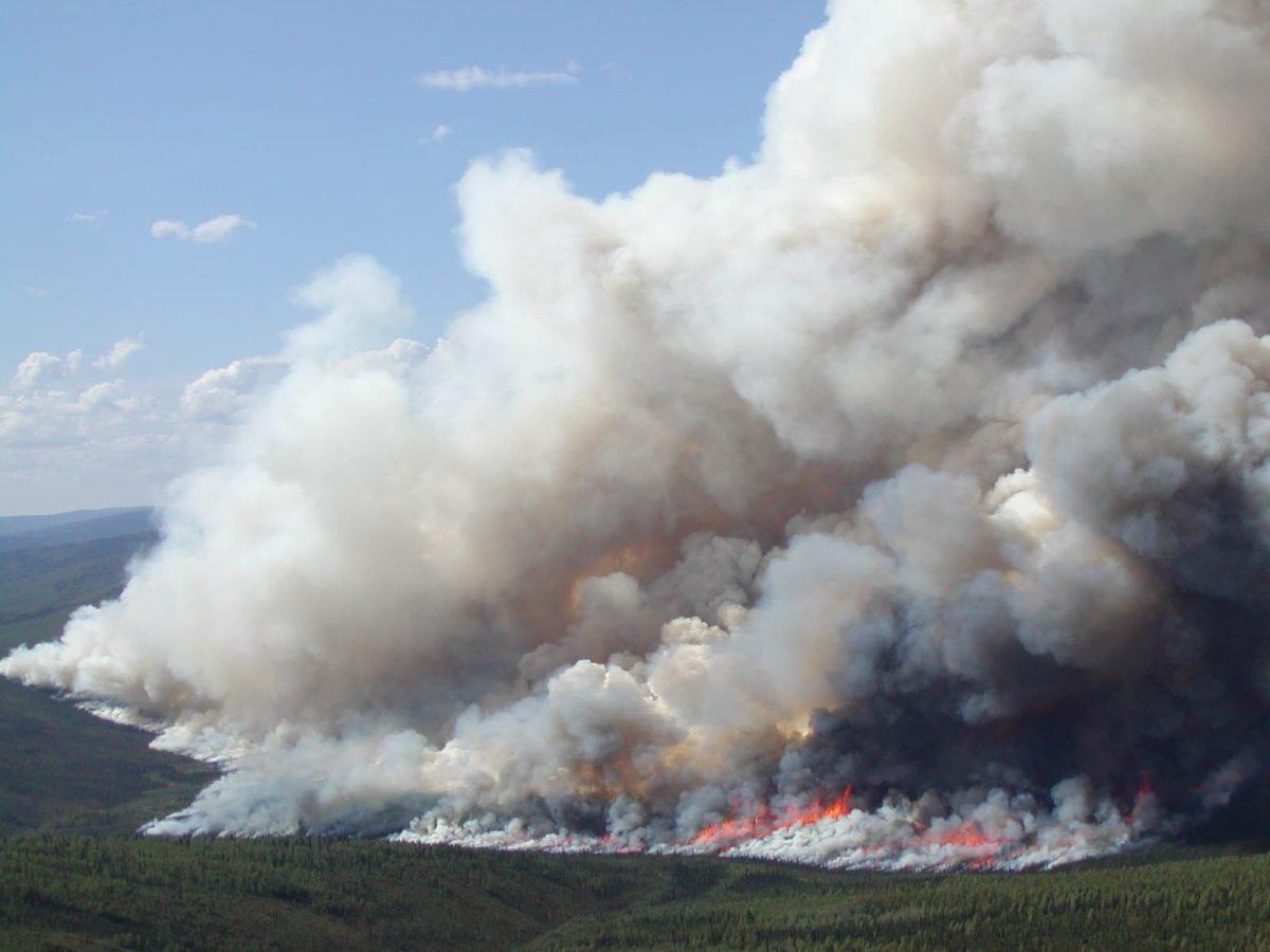 smoke plumes