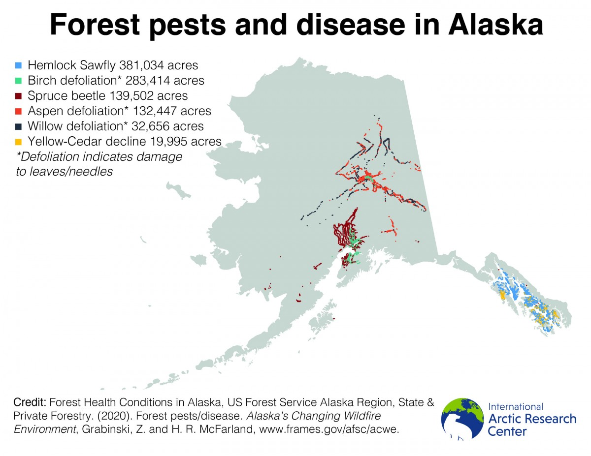 forest pests map