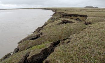 coastal permafrost thaw