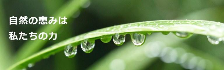 自然の恵みは私たちの力