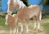 Horse Paradise My Dream Ranch V2.0.0 + (Unlimited Hourseshoes Gems Unlocked) Download Free