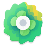 Moxy Icons 2.0 APK Patched