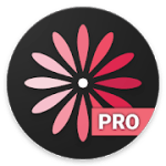 WomanLog Pro Calendar 5.6.14 APK Patched