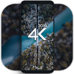 4K Wallpapers  Auto Wallpaper Changer 1.7.3.1 Pro APK Modded