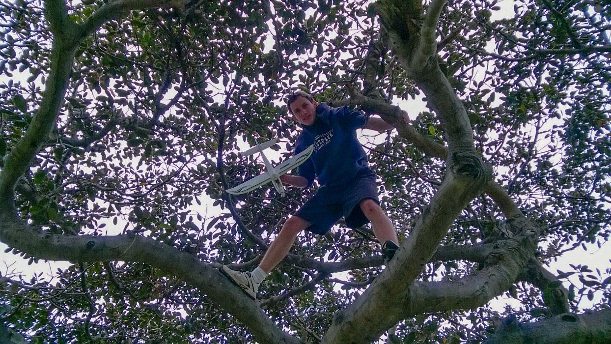 Climbing a tree