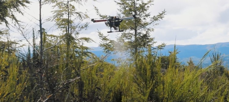 DroneSeed Partners with The Nature Conservancy in Oregon