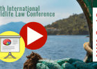 Presentaciones y vídeos del 19th International Wildlife Law Conference (IWLC-19)