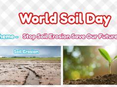 World Soil Day 2019