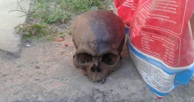 Ubatã: Crânio humano é encontrado no leito do Rio de Contas