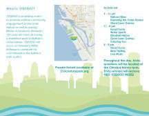 STEDFEST Brochure