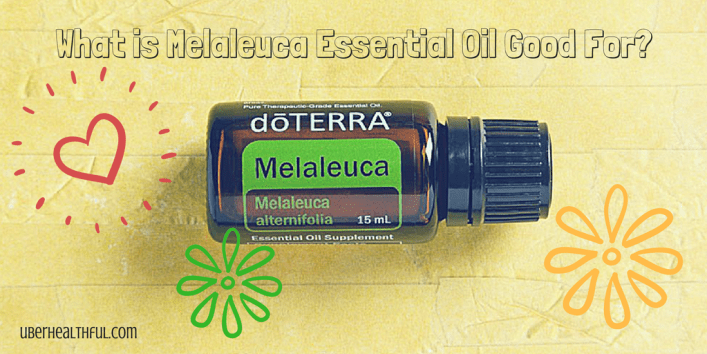 Best uses for Tea Tree Oil (Melaleuca)