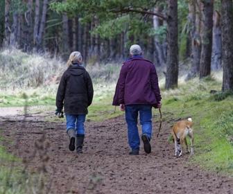 walking outdoors to de-stress