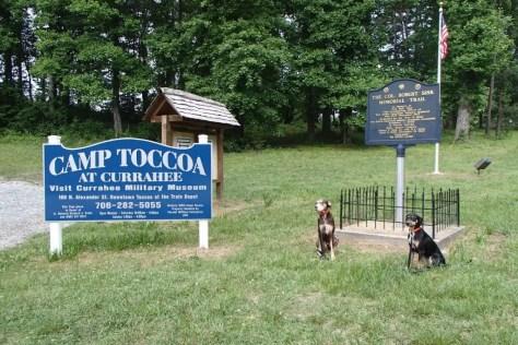 Ranger and Halo at Toccoa