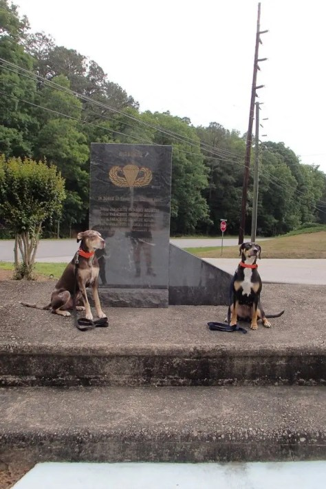 Ranger and Halo at 101st marker