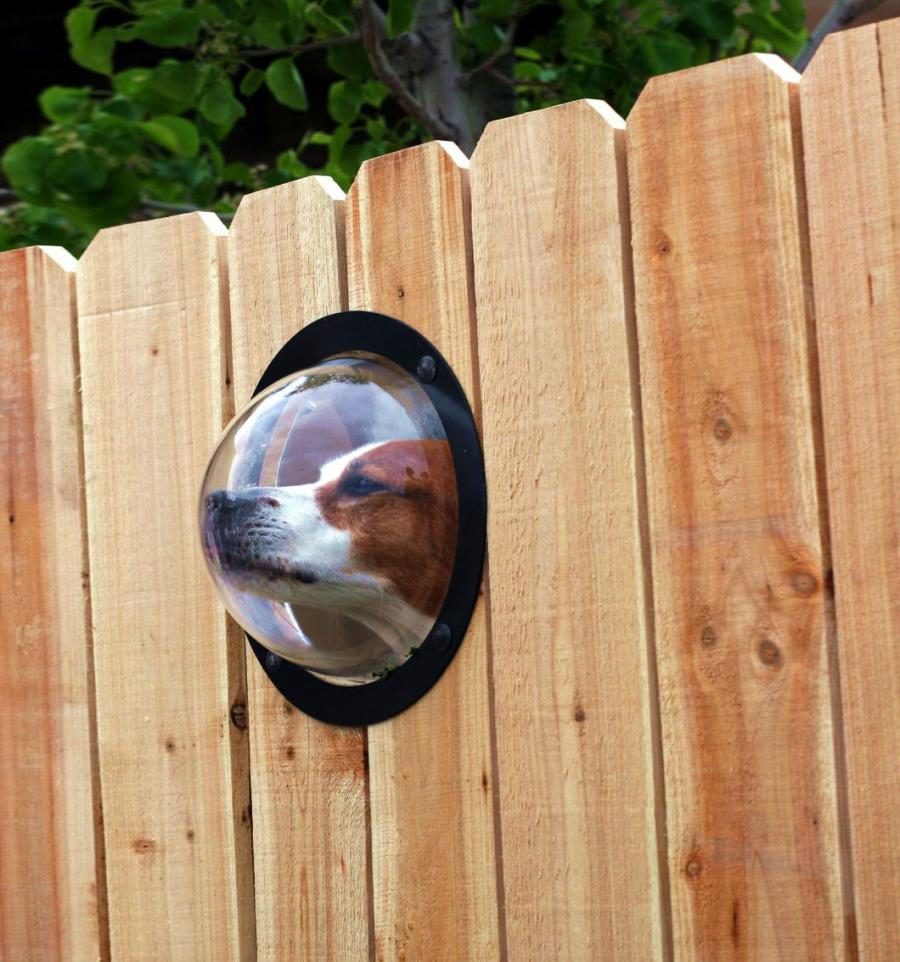 Pet Peek Fence Bubble Window For Dogs