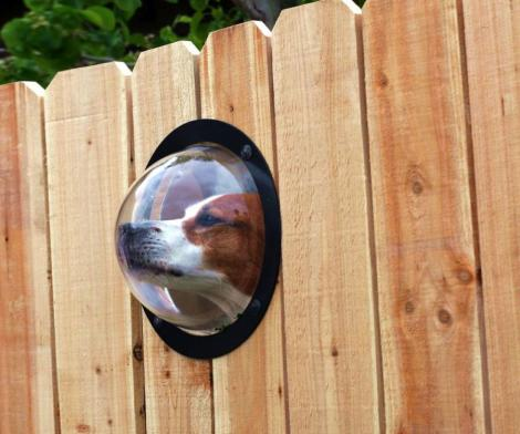 Pet Peek Fence Bubble Window