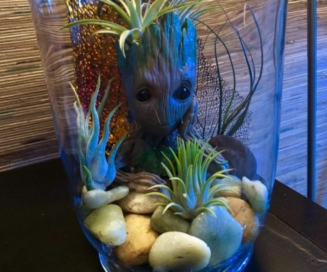Groot Pen Flower Pot with Drainage Hole