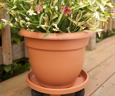 Ariana Self Watering Decorative Planter