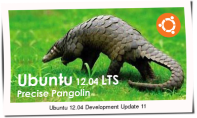 Ubuntu 12.04 Development Update 11