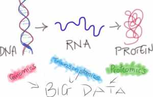 DNA--> RNA--Protein and Big data techniques to extract near complete information about them - by Swati Patankar