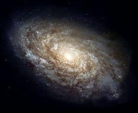Galaxies & Cluster Analysis