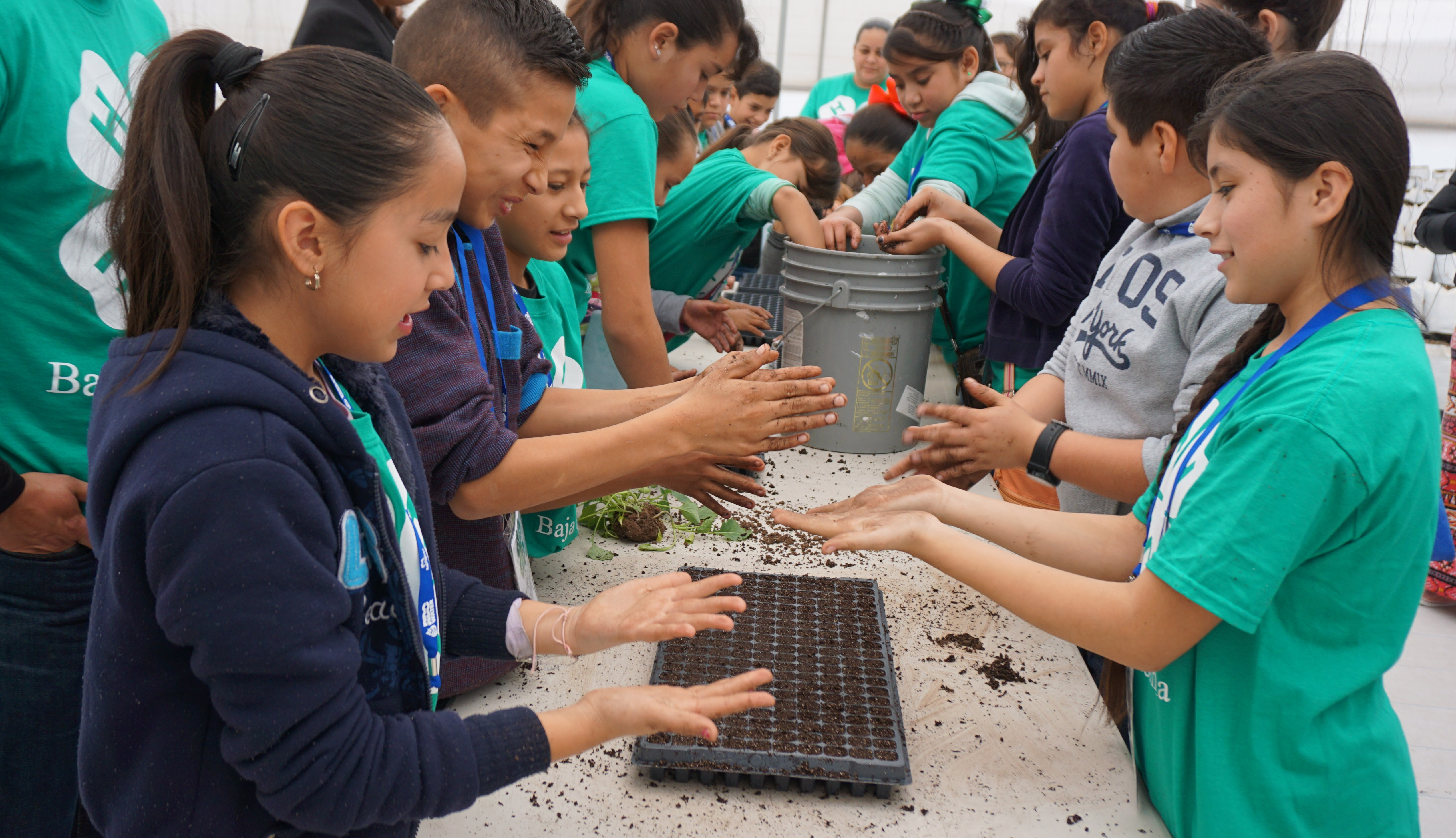 California 4 H Helps Launch Hands On Learning Club For
