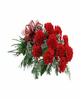 10 Red Carnations Hand Bunch