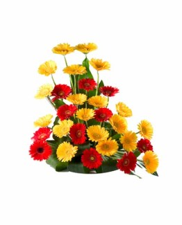 Mix Color Gerbera's Basket Arrangement
