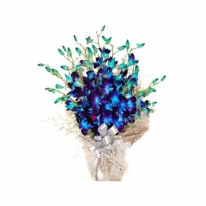 10 Blue Orchids Hand Bunch