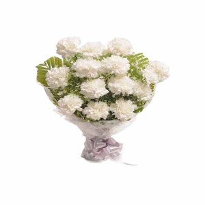 12 White Carnations Hand Bunch