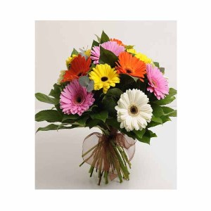 15 Mix Gerberas Bunch