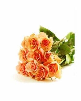 Orange Roses Hand Bunch