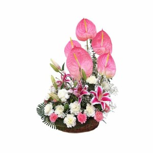 Mix Flowers Basket arrangement with Lilies, Carnation & Anthurium