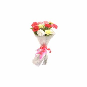 10 Mix Color Carnations Hand Bunch