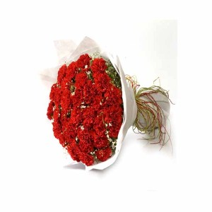 30 Red Carnations hand bunch
