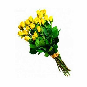 20 Yellow Roses Handbunch