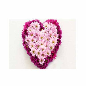 Gerberas Heart Shape Arrangement