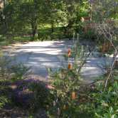 Uccello Lane - Early Days - Through the Banksia to now what is the Carpark