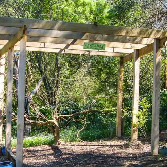 Wisteria Colonnade Structure up