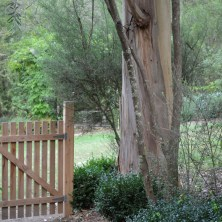 """Gate to start the new """"Secret Garden"""" on the way to look at the chooks"""